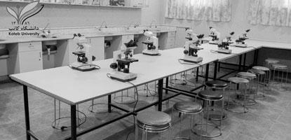 About Laboratory